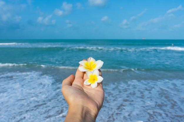 Вид от первого лица, девушка держит цветок франжипани в руке на фоне моря. спокойствие и отдых у моря