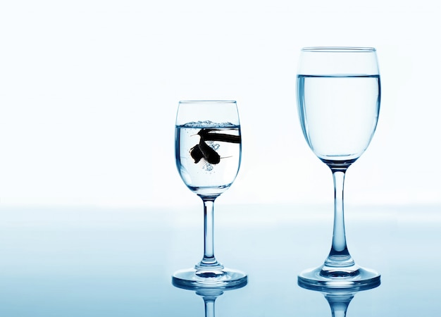 Fish in drinking glass looking for rise and improvement concept