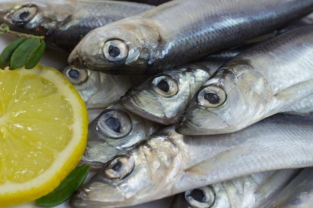 Fish herring and lemon. close-up