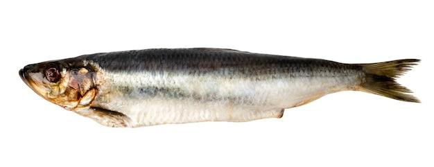 Сельдь рыбы на белом изолированы. вид сверху.