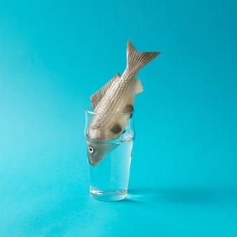 コップ一杯の水で魚。クリエイティブなミニマルコンセプト。