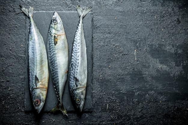 돌 보드에 생선 고등어. 검은 소박한 표면에