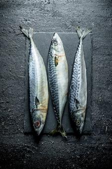돌 보드에 생선 고등어. 블랙 소박한