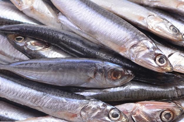 Рыба из кильки