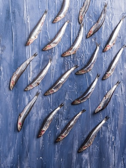 Fish pattern. fresh anchovies on blue
