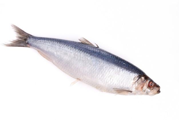 흰색으로 격리 요리할 준비가 된 물고기