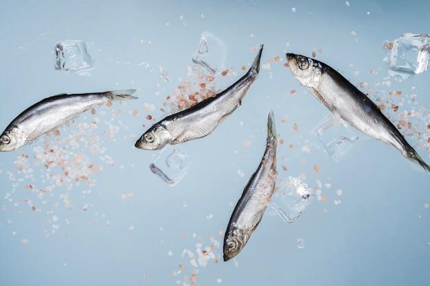 소금과 얼음 조각을 가진 생선