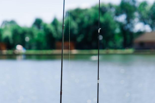 Рыбалка на озере, природная серия, удочка, снасти.