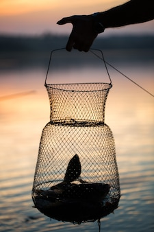Рыбалка, сырая пресноводная рыба в сети для улова.