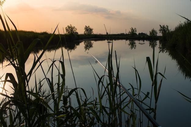 갈대의 연못에서 일몰에 낚싯대