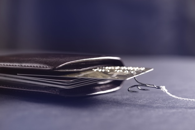A fishing rod hook snagged a credit card in my wallet. theft of data from credit cards. hacker stole money from a credit card.