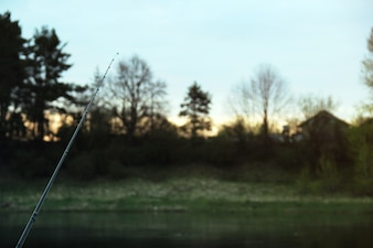 Fishing rod with trees background