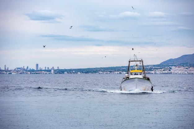 漁船が海でセーリング