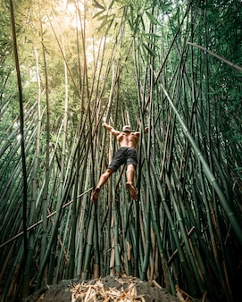 Fit male with his shirt off jumping on bamboo trees in hawaii
