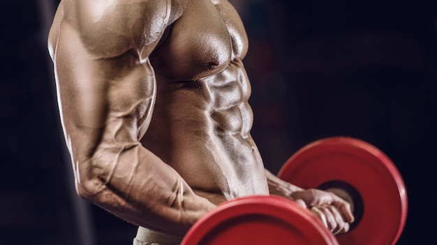 Fit man training training arm muscles at gym. pumping up biceps exercise.