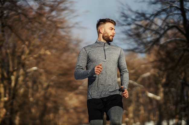 화창한 눈 덮인 겨울 날 숲에서 달리는 주자. 야외 피트니스, 유산소 운동, 겨울 피트니스