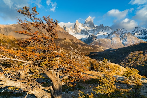 Fitz roy mount in los glaciares national park, el chalten, patagonia, argentina