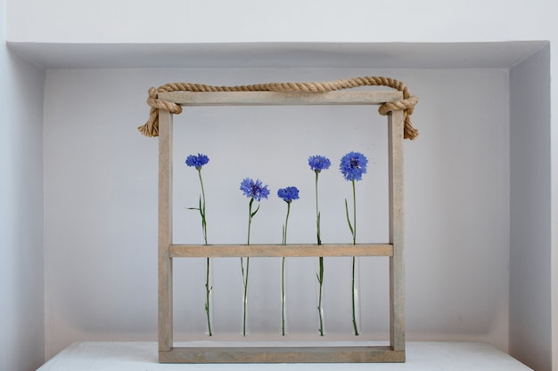 Five blue nice cornflowers in a little vases in a wooden frame over grey, simple flower gift and decoration on valentine`s day