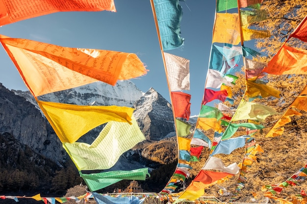 Five color prayer flags flying with xiannairi mountain in autumn forest. yading nature reserve