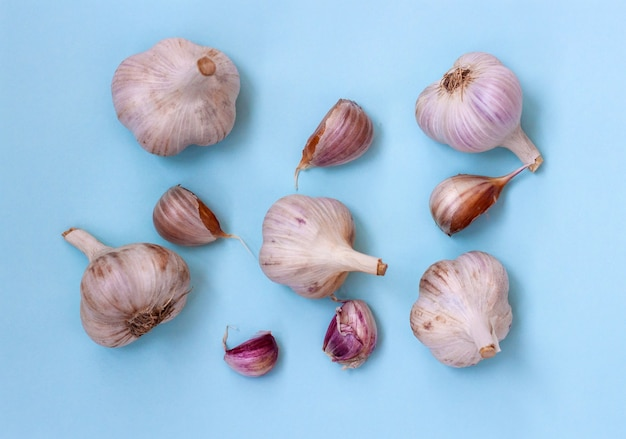 Five large heads of garlic and five cloves of garlic lie on a blue background, flatley.