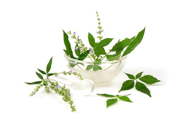 Пятилистное целомудренное дерево или цветы vitex negundo и зеленые листья, изолированные на белом фоне.