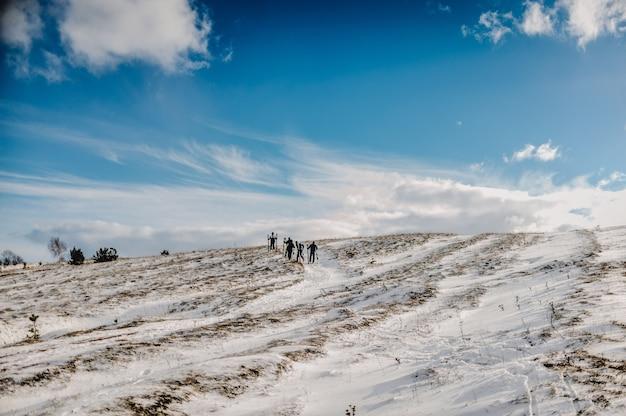 道路が悪いため、スキーで5人が徒歩で登ったり、雪の中を通り抜けたりします。閉じる。冬の自然。スキー/山岳競技のグループ。