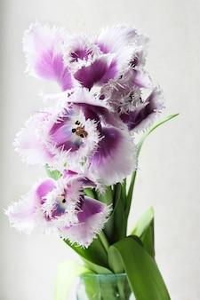 Five purple flower