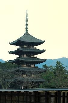 오층탑 프리미엄 사진