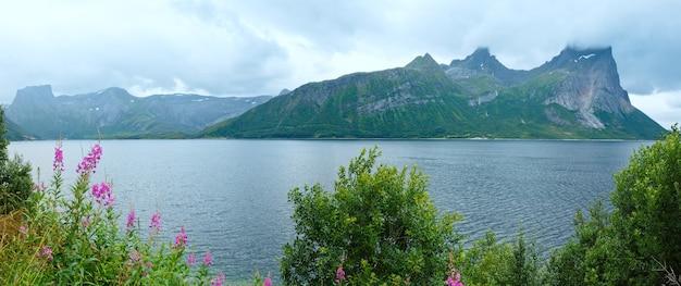 正面に花が咲くフィヨルドの夏の曇りの景色(ノルウェー)。パノラマ。
