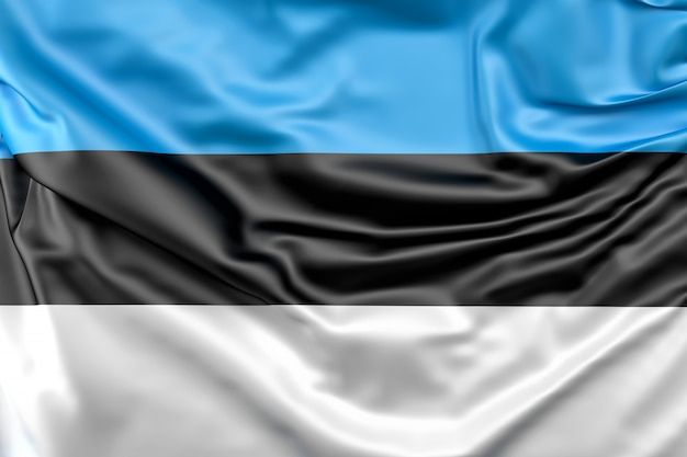 Bandiera dell'estonia Foto Gratuite