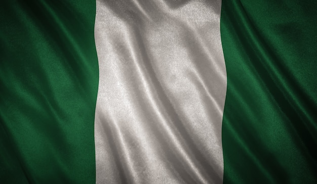 Flag of the nigeria