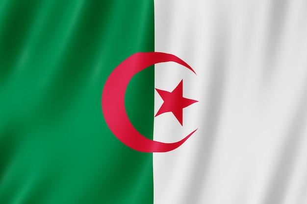 風に手を振っているアルジェリアの旗。