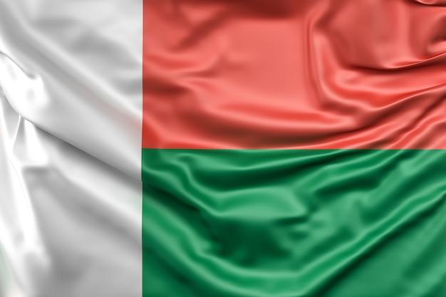 마다가스카르의 국기