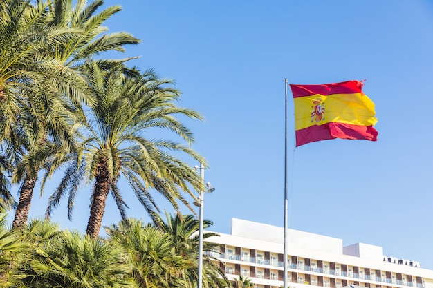Flag of spain at tourist resort with palm trees