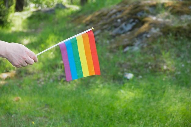 잔디와 나무의 배경에 있는 lgbt 커뮤니티의 깃발 상징, 여성의 손에 있는 깃발