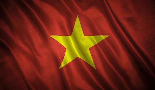 Flag of the vietnam
