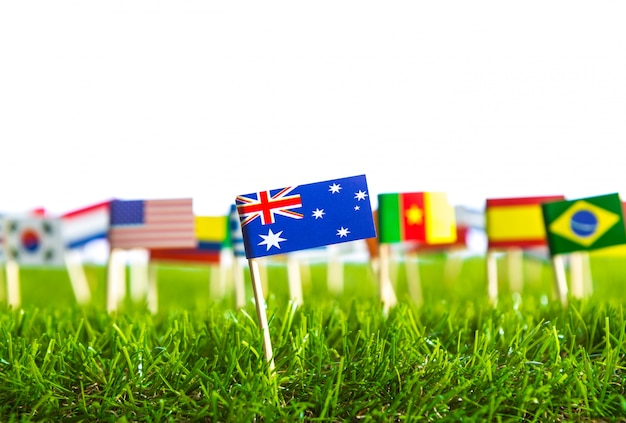 Flags of different countries punctured on a lawn