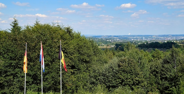 Flags from netherlands, belgium and germany on three country bor