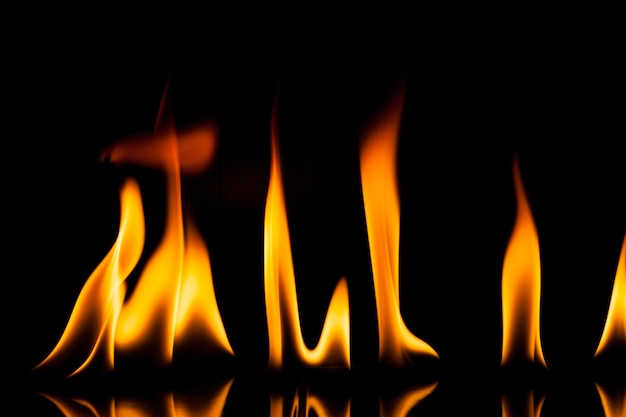 Flame fire  movement on a black background.