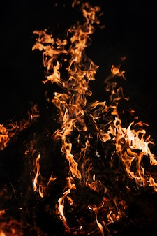 Flames of bonfire at night. fire flames on a black background
