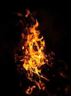夜のたき火の炎。黒の背景に火の炎