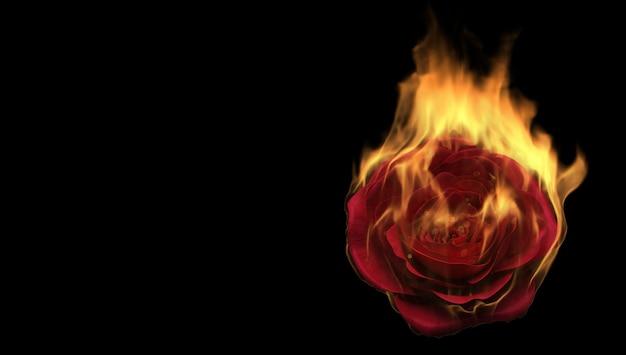 검은 바탕에 불타는 장미 꽃. 사랑 느낌 개념. 3d 렌더링