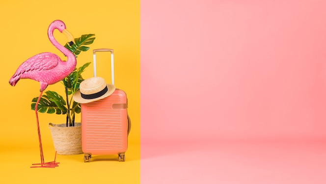 Flamingo, houseplant and suitcase on multicolor background