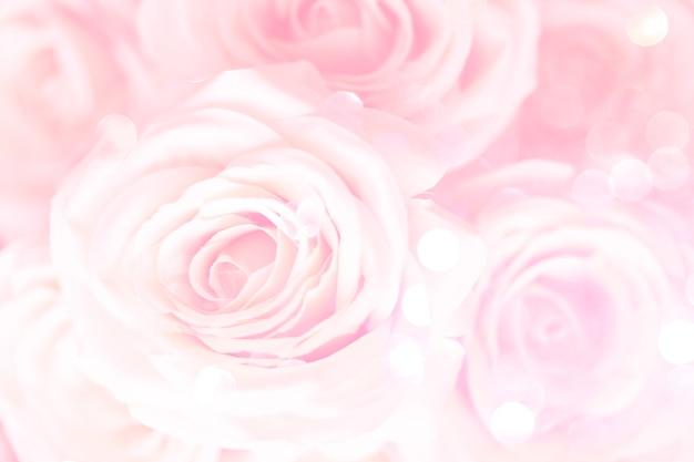플라밍고 핑크 장미 꽃무늬 배경