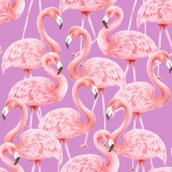 Flamingos seamless pattern on purple background