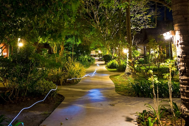 Flashlight beam freezelight at night on empty footpath through village in the jungle forest