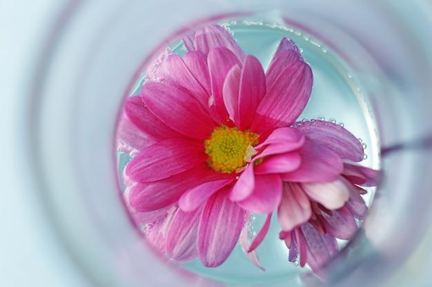 色の花とフラスコ