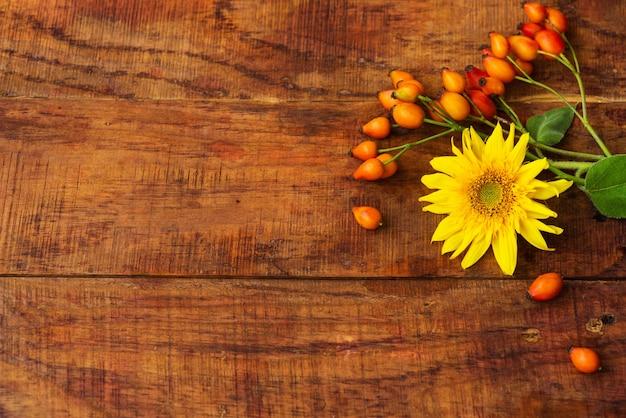 Плоский состав с ягодами шиповника и подсолнечником на деревянном столе. уютная осень или концепция зимнего отдыха