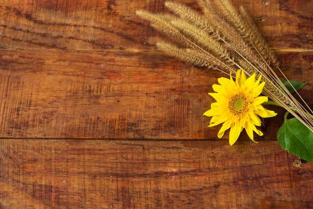 Плоский состав с колосками пшеницы и подсолнечником на деревянном столе. уютная осень или концепция зимнего отдыха. место для текста, рамки, вида сверху, пространства для копирования, макета