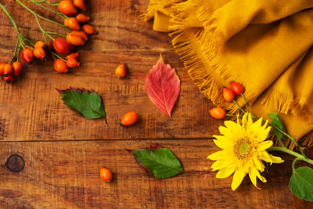 Flat composition with yellow knitted scarf, rosehips berries , leafs and sunflower on a wooden table. cozy autumn or the concept of winter rest. place for text, frame, top view, copy space, layout